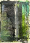 Vign_printemps_de_semence,_ecoline_et_encre_de_chine,_32_x_43_cm,_2009